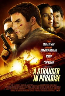 A Stranger In Paradise (2013)
