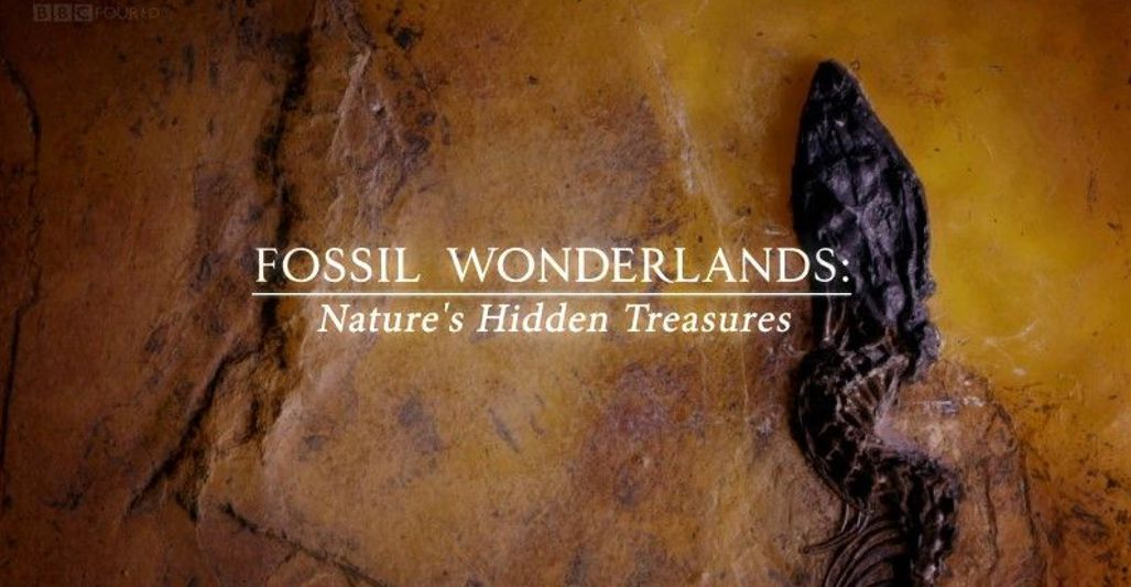 Bbc Fossil Wonderlands Nature's Hidden Treasures 1of3 Weird Wonders (2018)